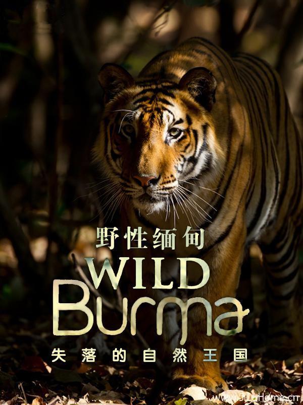 《野性缅甸:失落的自然王国 Wild Burma: Nature's Lost Kingdom》