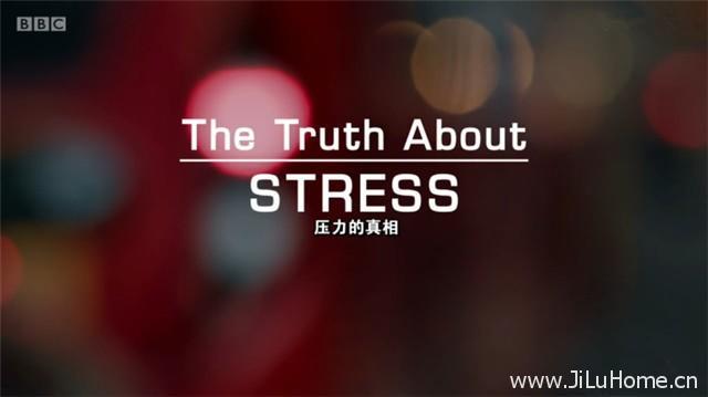 《压力的真相 The Truth About Stress(2017)》