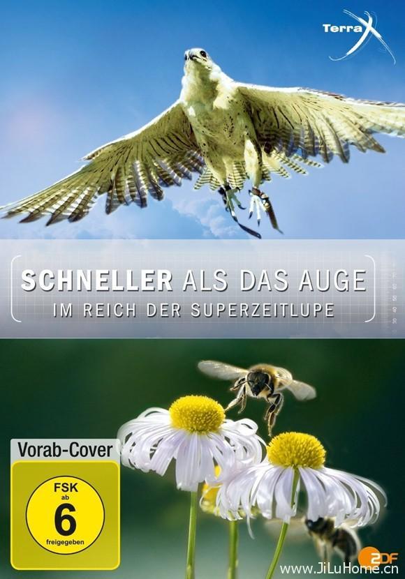 《超慢动作下的世界 Schneller als das Auge(2012)》