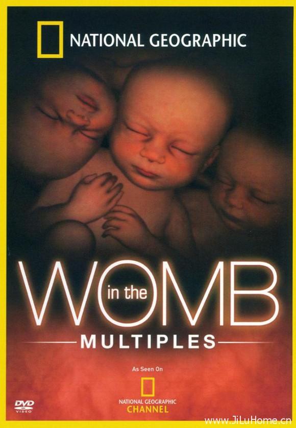 《子宫日记:多胞胎 In the Womb: Multiples (2007)》