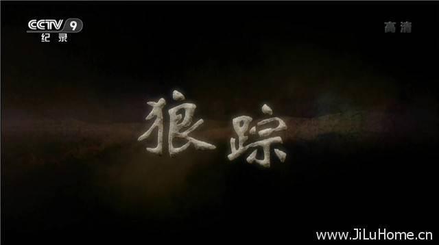 《狼踪 (2015)》