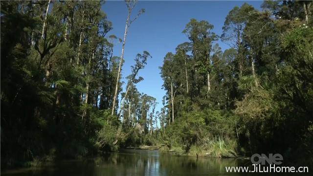 《新西兰国家公园之美 Wild About New Zealand (2013)》