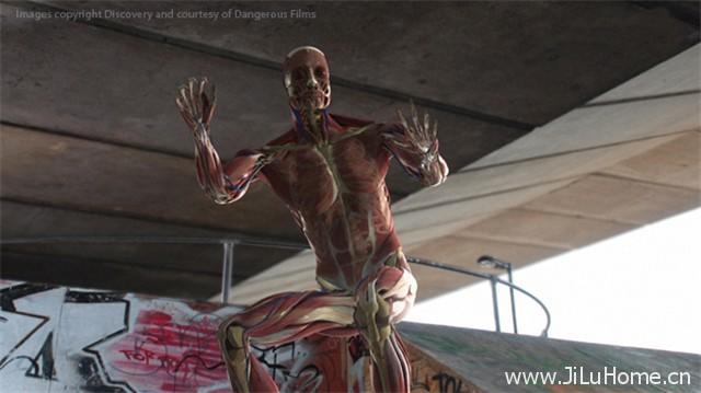 《人体:挑战极限/透视人体极限 Human Body: Pushing the Limits (2008)》