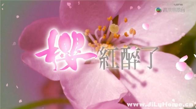 《樱红醉了 Sakura Memories (2009)》