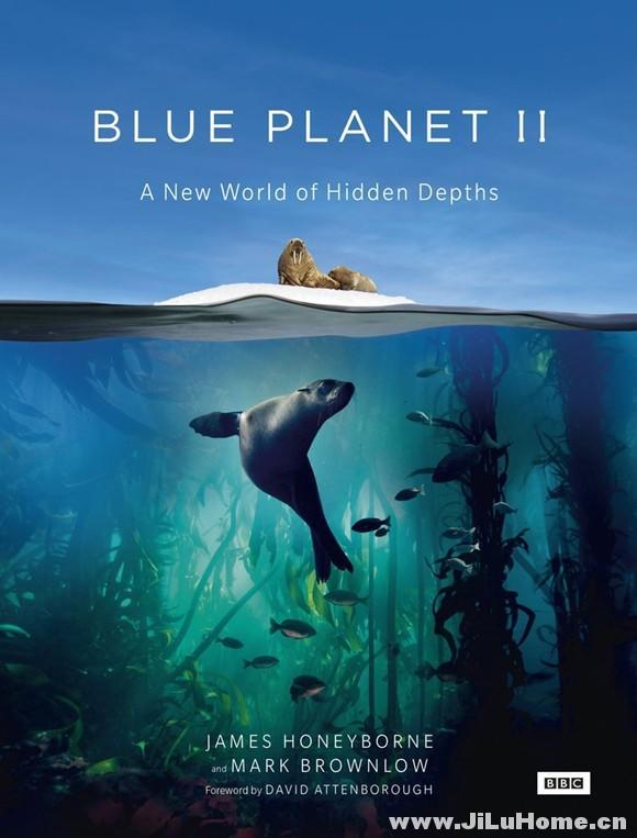 《蓝色星球2 Blue Planet II (2017)》