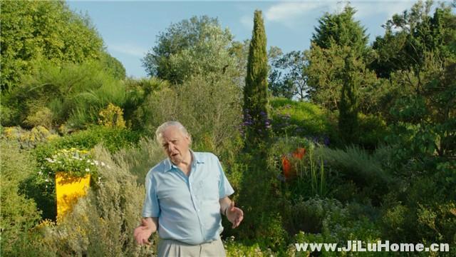 《与大卫·爱登堡一起探索植物王国 Kingdom of Plants (2012)》