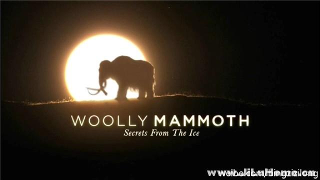 《揭秘冰层中的巨兽:猛犸象 Woolly Mammoth: Secrets from the Ice (2012)》