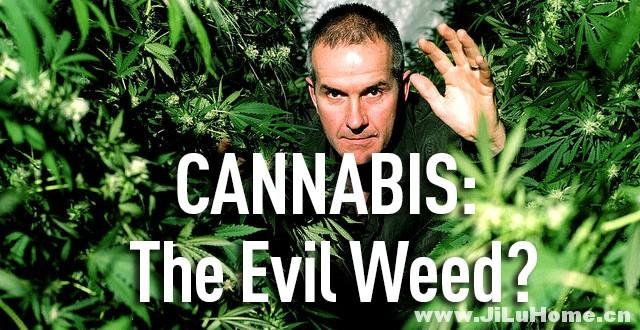 《大麻:罪恶之种? Cannabis: The Evil Weed? (2009)》