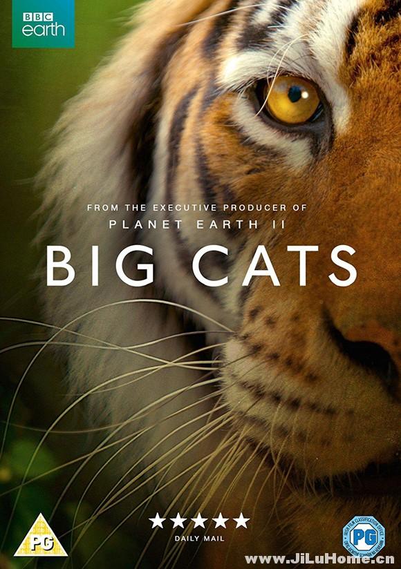 《大猫 Big Cats (2018)》