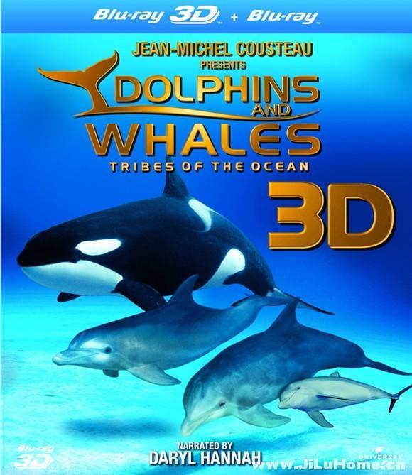 《海豚和鲸鱼 Dolphins & Whales Tribes of the Ocean 3D (2008)》
