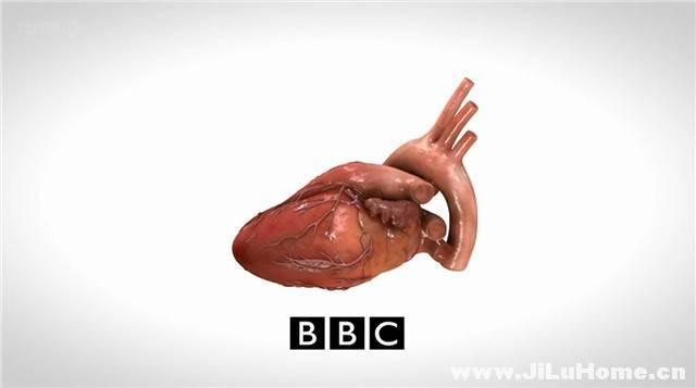 《攻克心脏病/人类心脏修复手术 How to Mend a Broken Heart (2011)》