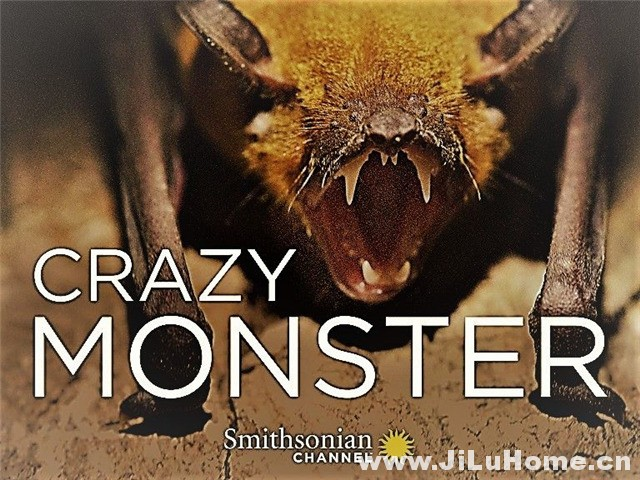 《疯狂怪兽 Crazy Monster (2014)》