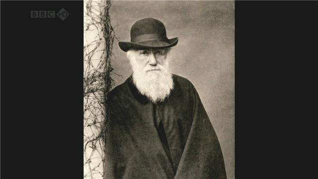 《达尔文所不知道的 What Darwin Didn't Know 2009》