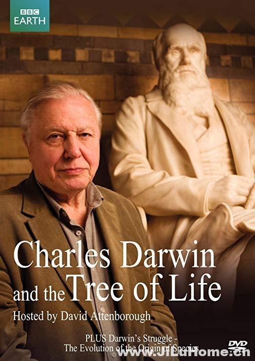 《达尔文和生命之树 Charles Darwin and the Tree of Life 2009》