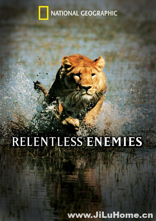 《冷酷宿敌/致命宿敌 Relentless Enemies 2006》