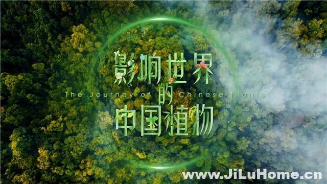《影响世界的中国植物》