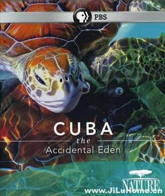 《古巴:意外的伊甸园 Nature Cuba: The Accidental Eden 2010》
