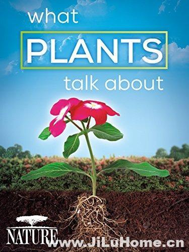 《植物间的对话 What Plants Talk About》