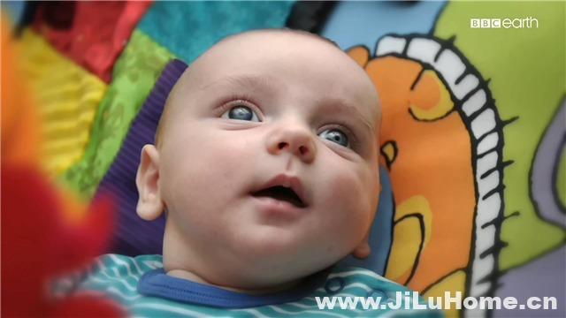 《婴儿的秘密生活 Secret Life of Babies》