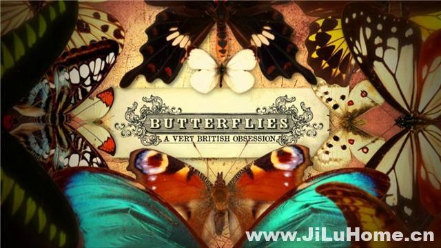 《翩翩蝴蝶:英国式迷恋 Butterflies: A Very British Obsession (2010)》
