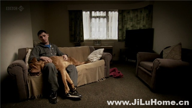 《与狗同行 Walking with Dogs (2012)》
