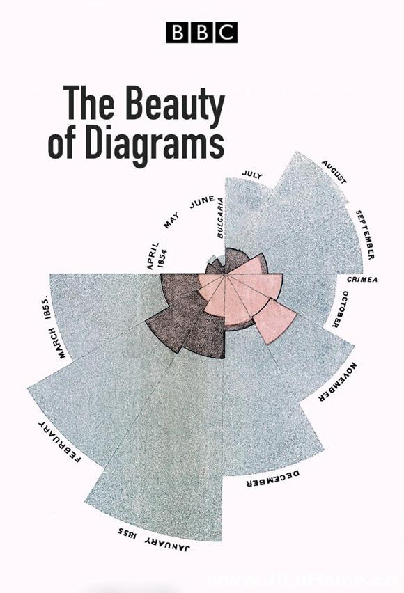 《美丽的科学图画/图形之美 The Beauty of Diagrams (2010)》