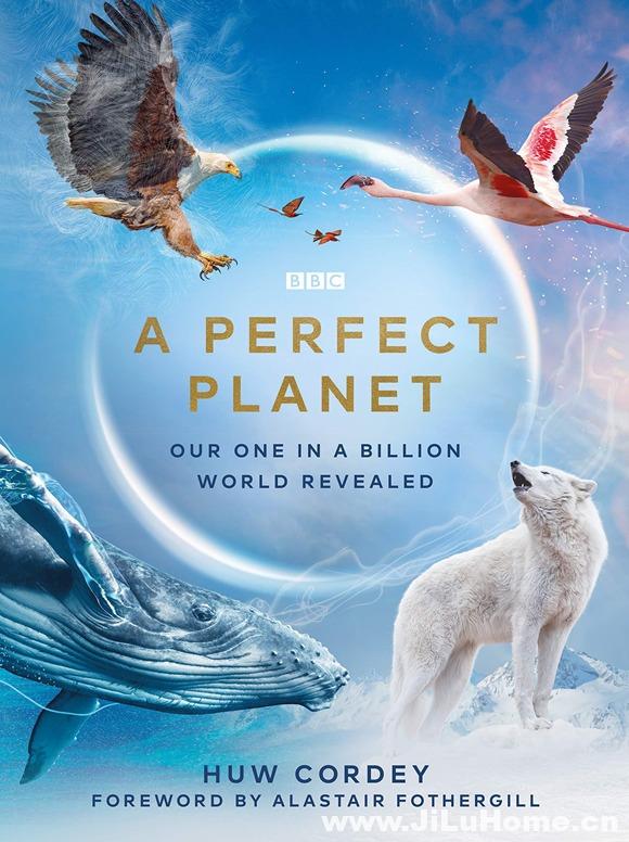 《完美星球 A Perfect Planet (2021)》