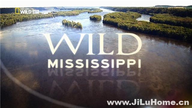 《狂野密西西比/野性密西西比 Wild Mississippi (2012)》